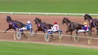 Vidéo de la course PMU PRIX DE BERNE