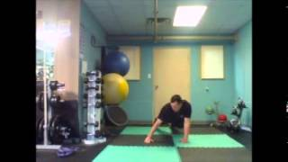 Plank Weight Transfers