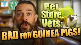 Pet Store Vets Are Bad For Guinea Pigs!