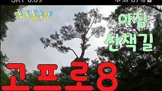 [kobo jeong] 고프로8 타임워프의 아침 산책길…