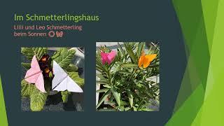 Kleiner Zoo aus Papier: Kreativprojekt in der Erzieherausbildung an der #FachschuleHerbrechtingen.