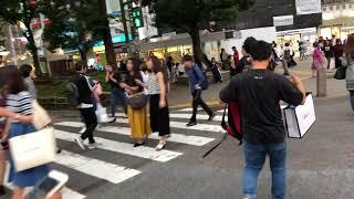 shibuya way to cheap hotel(shibuya ko crossing )