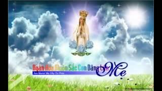Ave Maria con dâng lời chào Mẹ