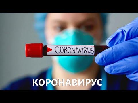 Вопрос науки. КОРОНАВИРУС COVID-19: отличие от других вирусов, борьба с эпидемией, прогнозы