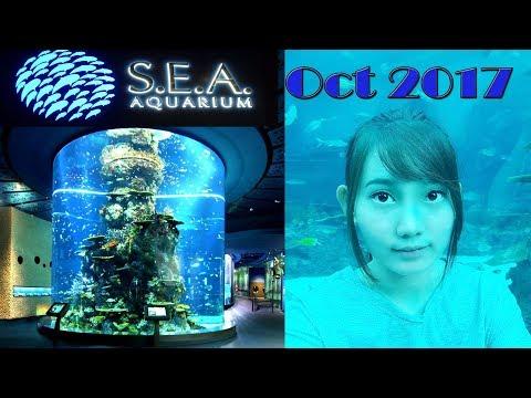 SEA Aquarium Singapore + Maritime Museum Oktober 2017 l Vlog #4