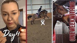 SCHWERE AUFGABE | #equestrianbeauty | Zickenkrieg | #owwm 2019 Day4 | BinieBo