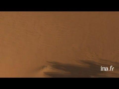 Mauritanie : caravane de dromadaires dans les dunes