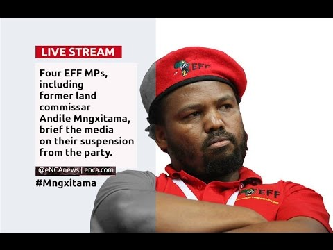 LIVE: Suspended EFF MP's media briefing