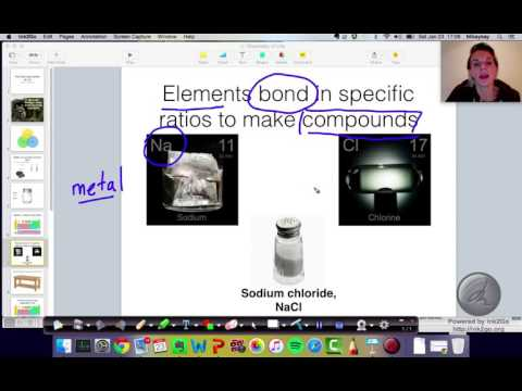 The Chemical Context of Life: Matter and Essential Elements (2.1)