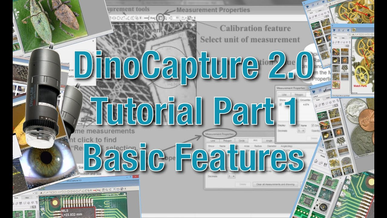 DinoCapture 2 0: Microscope Imaging Software | Dino-Lite