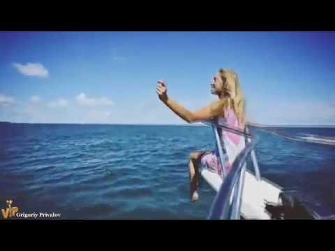 Песня все дельфины в ураган уплывают в океан слова скачать.