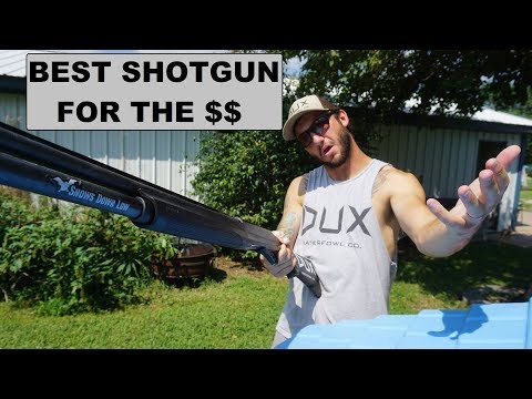 My Opinion On The Best Waterfowl Shotgun For The Money?