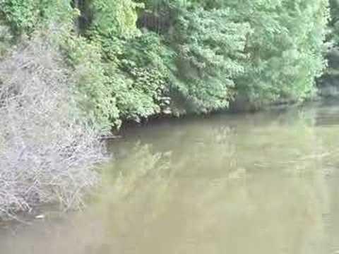 Buckeye bassin at belmont lake 3 fishing school youtube for Buckeye lake fishing