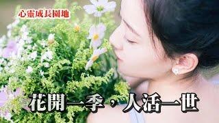 【心靈成長園地】花開一季,人活一世!