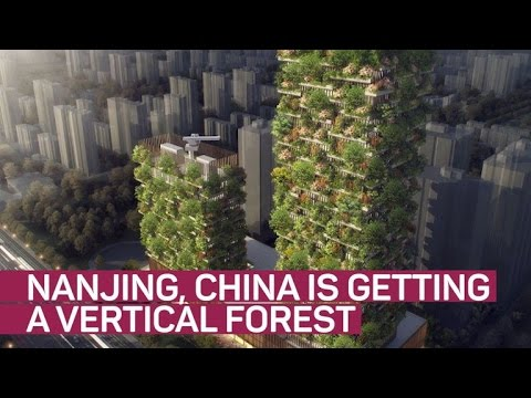 Vertical forest takes root in China (CNET News)