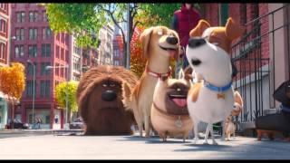 Tajný život mazlíčků (The Secret Life Of Pets) - druhý oficiální český HD trailer