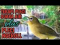 Terapi Pleci Suara Air Plus Pleci Ngerol Full Isian  Mp3 - Mp4 Download