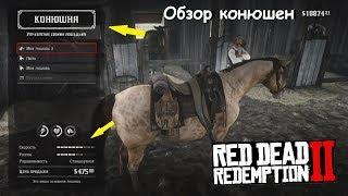 Где купить ДОРОГУЮ лошадь в RDR 2: Обзор всех конюшен в Red Dead Redemption 2