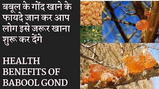 Health Benefits Of Babool Gond   बबूल की गौंद के फायदे जानकर चोक जाएगे