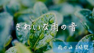 【超高音質・立体音響】きれいな雨の音(ほぼ他の音無し2時間Ver.)!読書 睡眠 瞑想用bgm