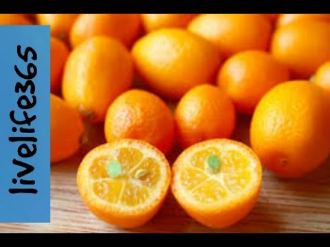How to...Eat a Kumquat - YouTube