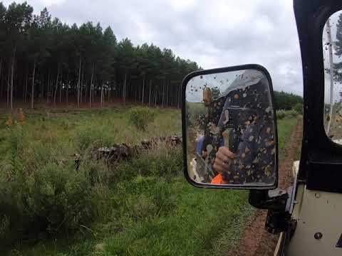 De Jeep na Coxilha Rica
