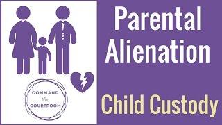 Parental Alienation in Child Custody Cases