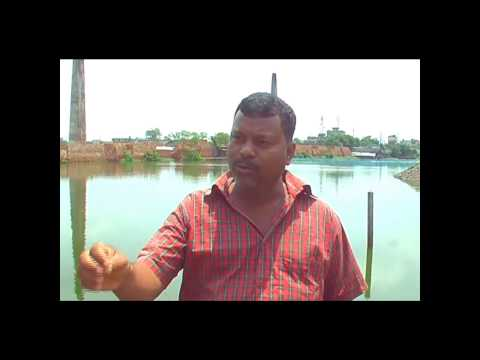 Bangladesh: World Day Against Child Labour 2013