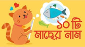 10 Fish names from English to Bengali ( বাংলা ) for