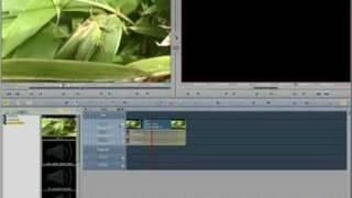 Editing & Interface Basics Avid Liquid Tutorial (Part 1/2)