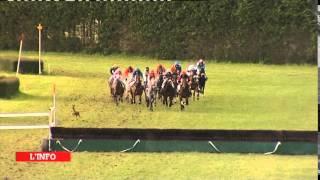 Insolite - Un chevreuil s'invite en pleine course de chevaux