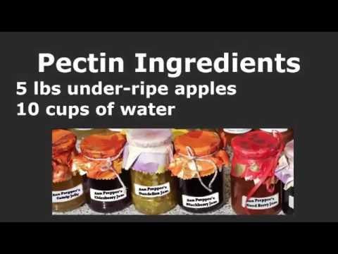 Homemade Apple Pectin