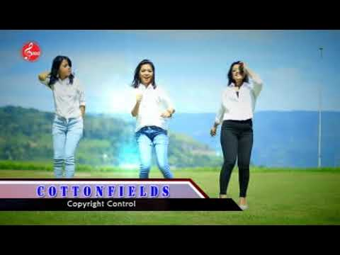 Artha Sister - Cottonfields