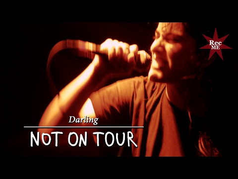 "Not On Tour ""Darling"" @ Estraperlo Club (29/10/2016) Outro FEST III"