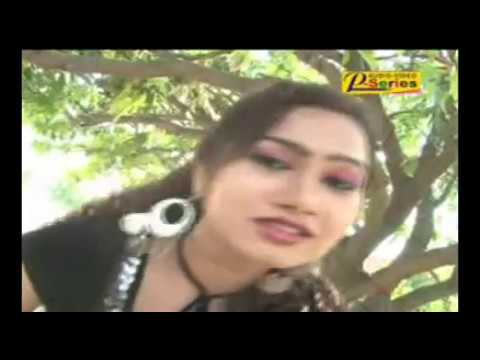 BIRHA RADHESHYAM SOTAWALE (VIDEO)- BABA AASHARAM KAND