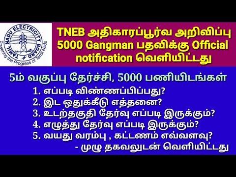 TNEB - காலியிடம் 5000nos.  Gangman பதவி - Official notification வெளியிட்டது - மின் வாரியம்