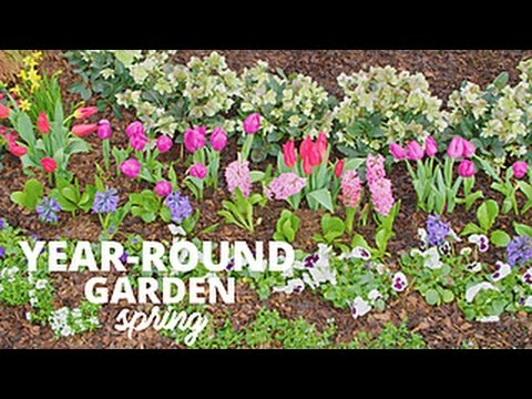 How To Plant A Year Round Garden Hgtv