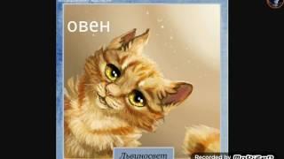 Коты воители/гороскоп Грозового Племени
