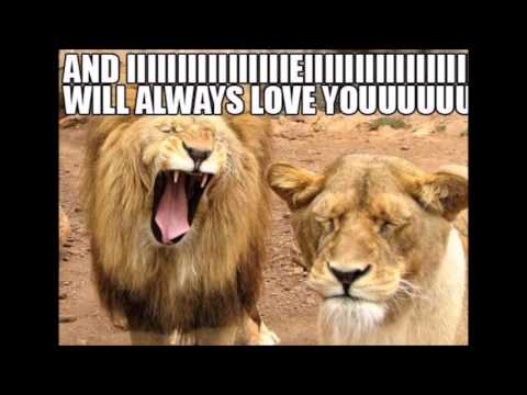 The Most Cute & Funny Love Memes Collection EVER!