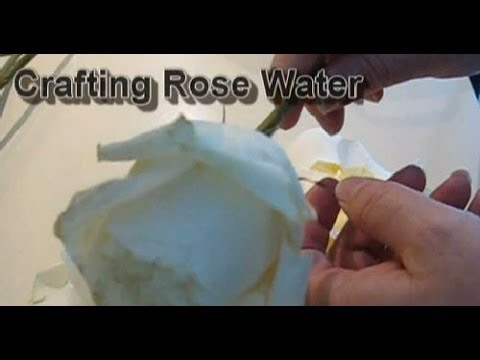 How Do You Craft Rose Water?