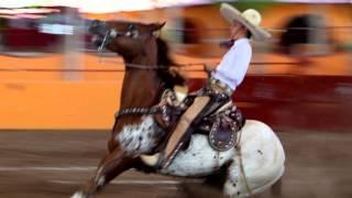 OLIMPIADA NACIONAL 2015 producciones -PASION CHARRA-