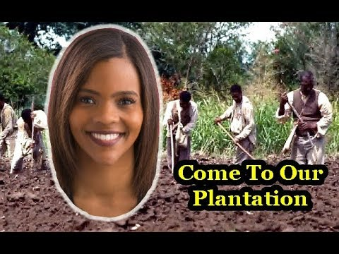 Candace Owens: Leader of The Conservative Plantation