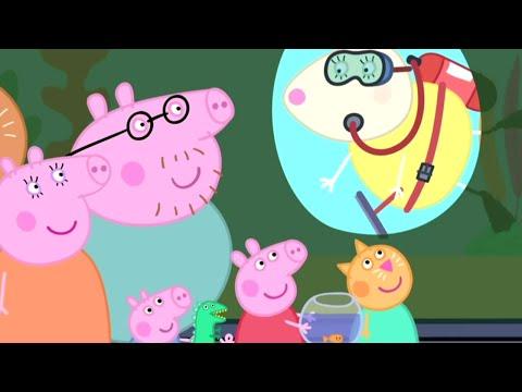 Peppa Pig Português Brasil 🐟O AQUÁRIO! 🐟 Peppa Pig Peppa Pig