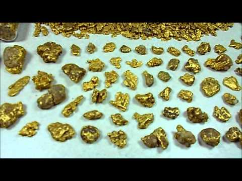 Alaska Gold Nugget Collection