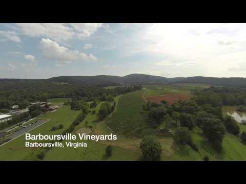 Aerial Video Tour Of Charlottesville, VA And UVA