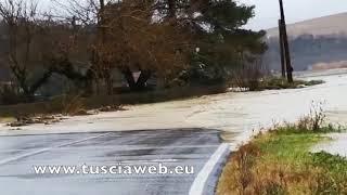 Maltempo a Tarquinia, il torrente esonda e la strada si allaga