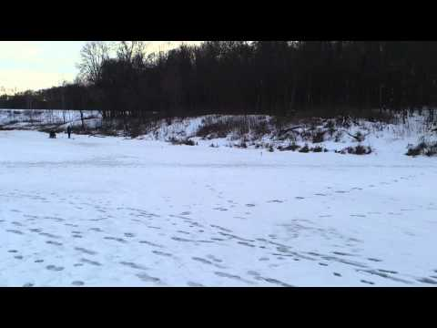 Платные пруды Тульской области