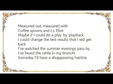 Crash Test Dummies - Afternoons  Coffeespoons Lyrics