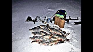 Зимняя рыбалка 2020 Чёртик муровей и муха по прежнему работают Ловля рыбы на озере