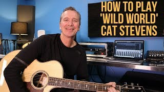 How to play 'Wild World' by Cat Stevens